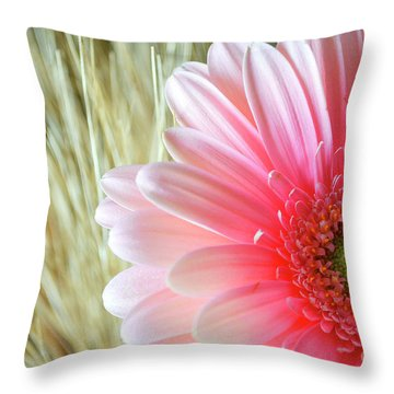 Throw Pillow featuring the photograph Gerberlicious by Traci Cottingham
