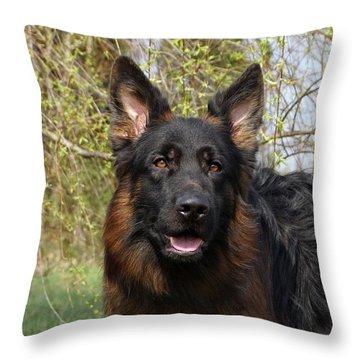 German Shepherd Close Up Throw Pillow by Sandy Keeton