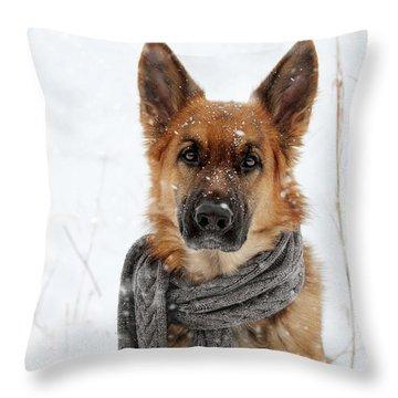 German Shepherd Wearing Scarf In Snow Throw Pillow