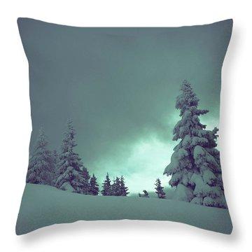 German Winter Landscape Throw Pillow