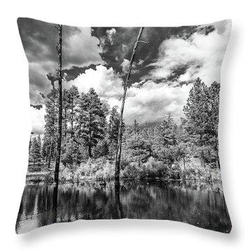 Throw Pillow featuring the photograph Getaway by Rick Furmanek