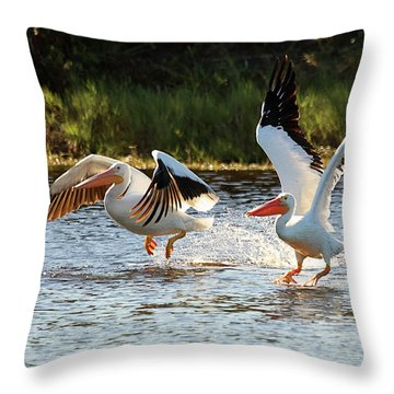 Getting Airborne Throw Pillow