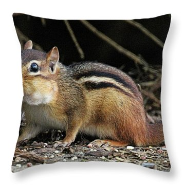 Getting Groceries  Throw Pillow
