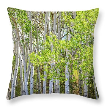Getting Lost In The Wilderness Throw Pillow by James BO Insogna