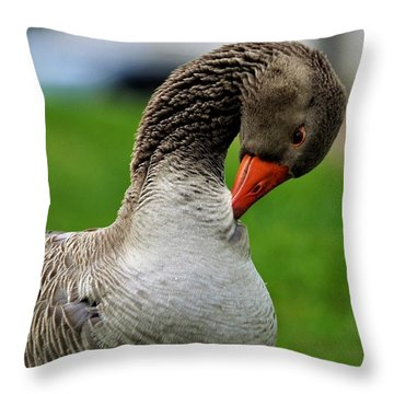 Getting Ready For Bed Throw Pillow
