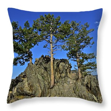 Getting To The Root Throw Pillow