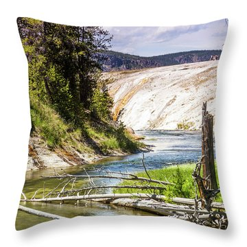 Geyser Stream Throw Pillow