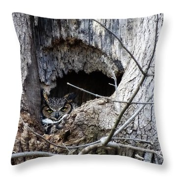 GHO Throw Pillow