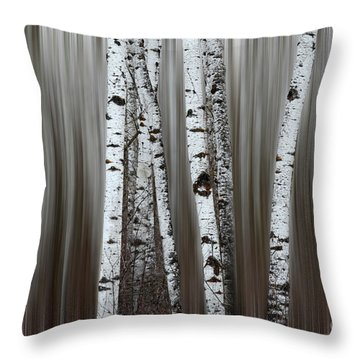 Throw Pillow featuring the photograph Ghost Forest 1 by Bob Christopher