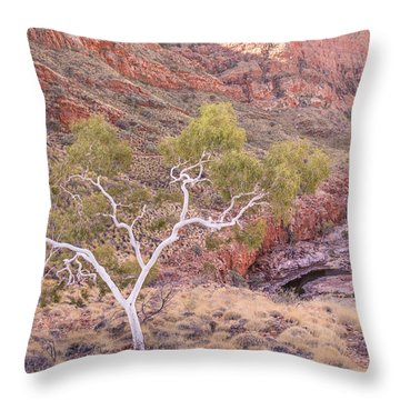 Ghost Gum Throw Pillow