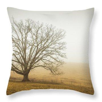 Tree In Fog - Blue Ridge Parkway Throw Pillow