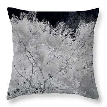 Ghost Of A Tree Throw Pillow