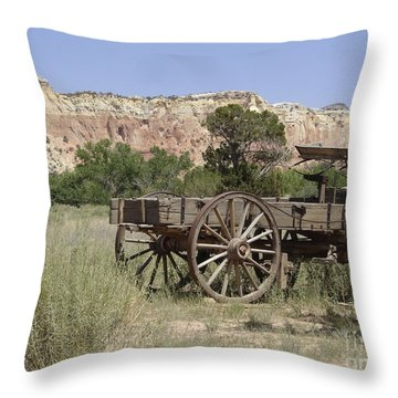 Ghost Ranch Throw Pillow by Mary Rogers