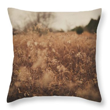 Throw Pillow featuring the photograph Ghost by Shane Holsclaw