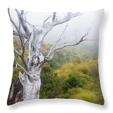 Throw Pillow featuring the photograph Ghost by Werner Padarin