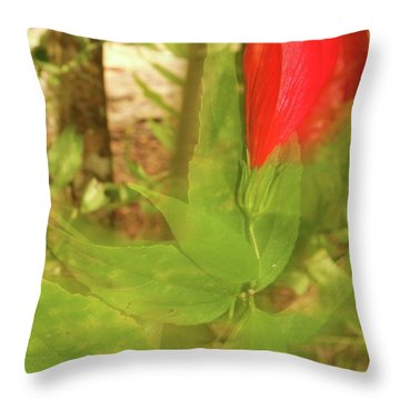 Throw Pillow featuring the photograph Ghostly by Diane Miller