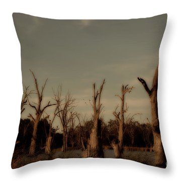 Throw Pillow featuring the photograph Ghostly Trees by Douglas Barnard