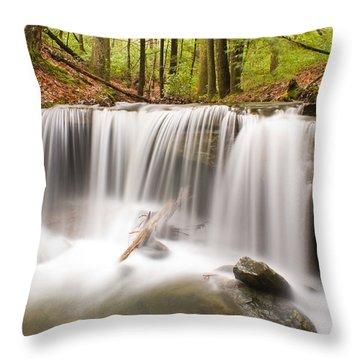 Ghostly Waterfall Throw Pillow by Douglas Barnett
