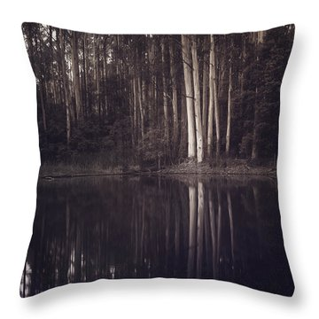 Ghosts Of My Heart Throw Pillow