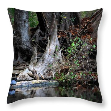 Giant Cypress Knees Throw Pillow