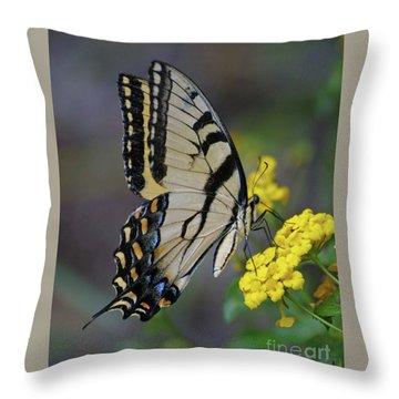 Giant Eastern Swallowtail Throw Pillow