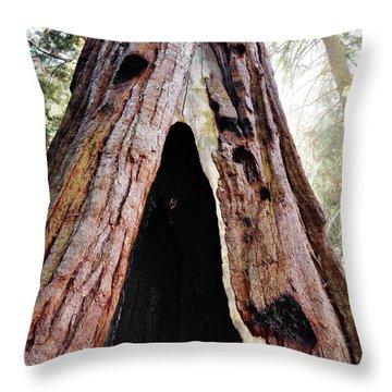 Giant Forest Giant Sequoia Throw Pillow