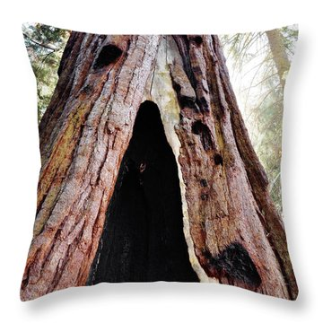 Giant Forest Giant Sequoia Throw Pillow
