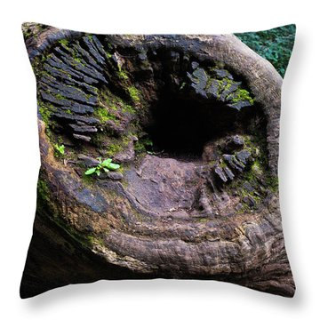 Throw Pillow featuring the photograph Giant Knot In Tree by Scott Lyons