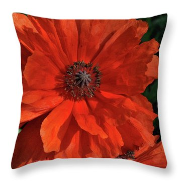 Giant Mountain Poppy Throw Pillow