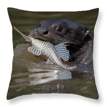 Giant Otter #1 Throw Pillow by Wade Aiken