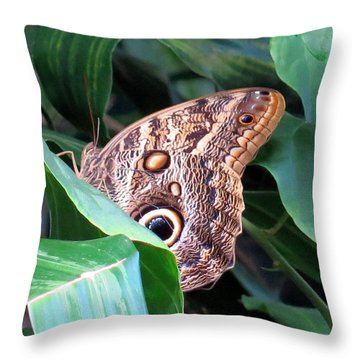 Giant Owl Butterfly Throw Pillow by Betty Buller Whitehead