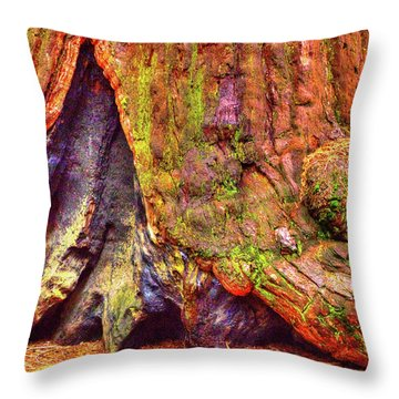 Giant Sequoia Base With Fire Scar Throw Pillow