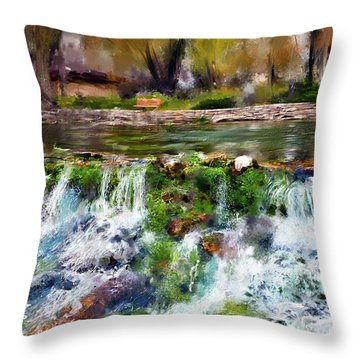 Giant Springs 1 Throw Pillow by Susan Kinney
