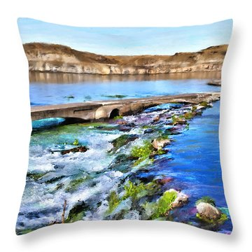 Giant Springs 3 Throw Pillow by Susan Kinney