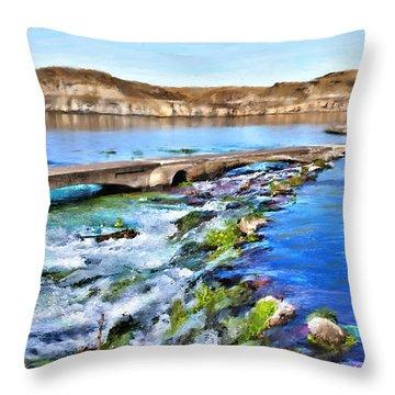 Giant Springs 3 Throw Pillow