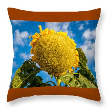 Giant Sunflower Against A Blue Sky With Clouds. Throw Pillow