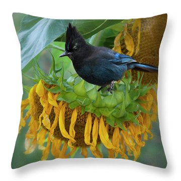 Giant Sunflower With Jay Throw Pillow
