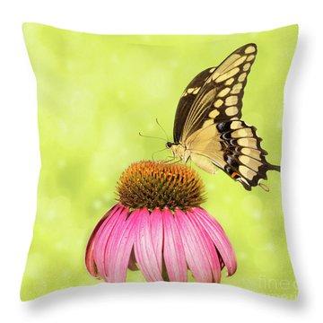 Giant Swallowtail On Coneflower Throw Pillow
