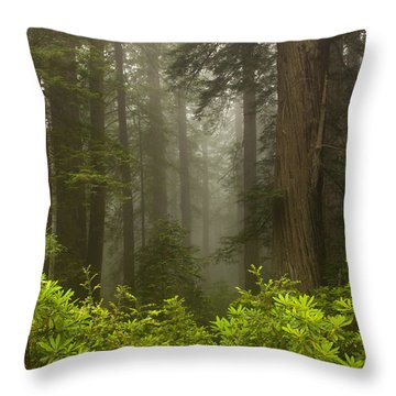 Giants In The Mist Throw Pillow by Mike  Dawson