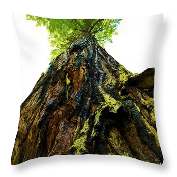 Giants Of The Earth Throw Pillow