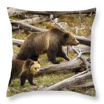 Throw Pillow featuring the photograph Gibbon Pair by Aaron Whittemore