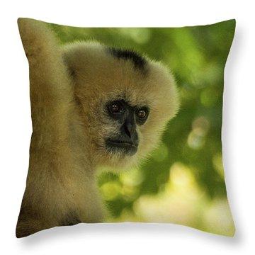 Gibbon Portrait Throw Pillow