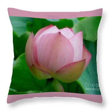 Gift Of God's Creation Throw Pillow by Chad and Stacey Hall