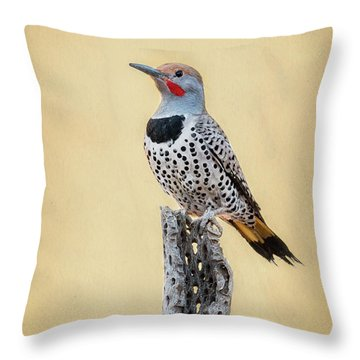 Gilded Flicker Throw Pillow