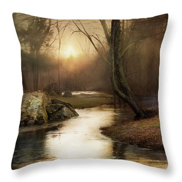 Throw Pillow featuring the photograph Gilded Woodland by Robin-Lee Vieira