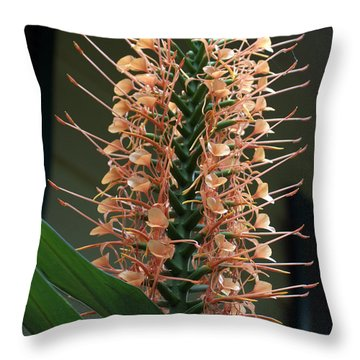 Ginger Blossom Throw Pillow by Farol Tomson