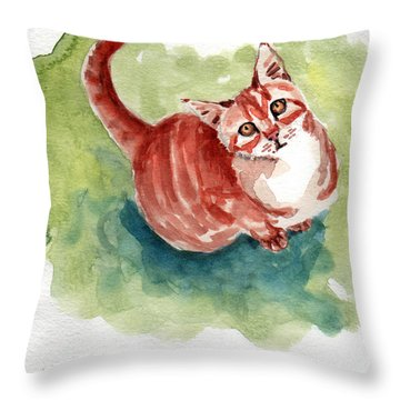 Ginger Tabby 8 Throw Pillow