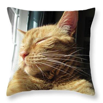 Ginger Tabby Throw Pillow