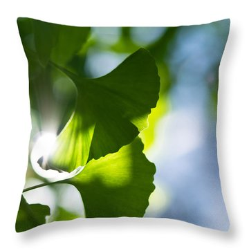 Gingko Leaves In The Sun Throw Pillow