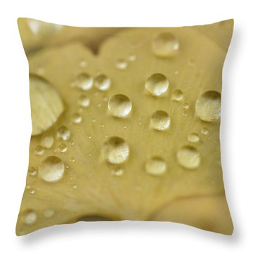 Ginkgo Balls Throw Pillow